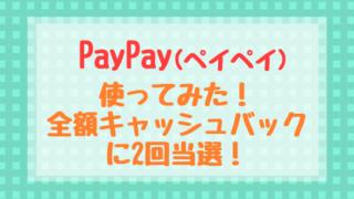PayPay ペイペイ全額キャッシュバック